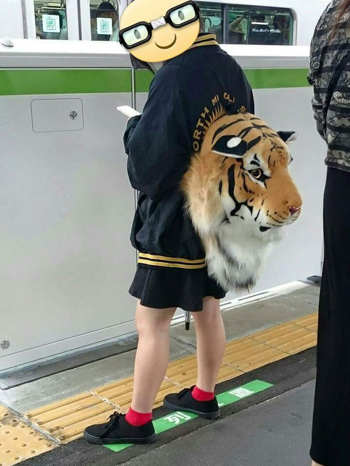 Tigre Tokyo