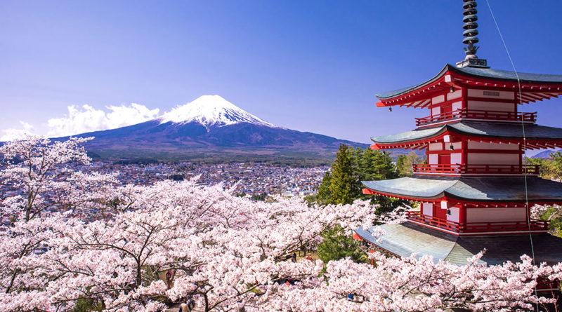 La Fioritura dei Ciliegi in Giappone. Storia e Previsioni 2019